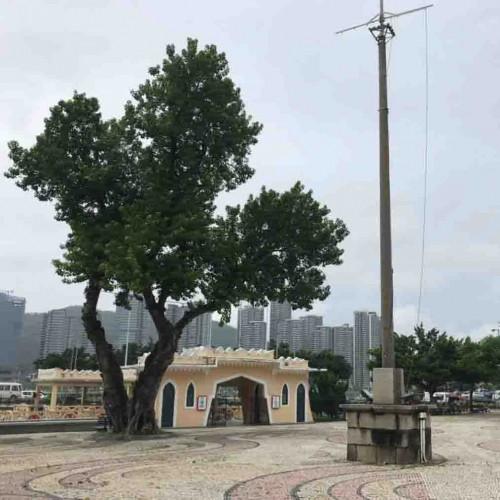 媽閣廟広場